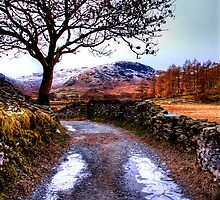 The Lane by English Landscape Prints