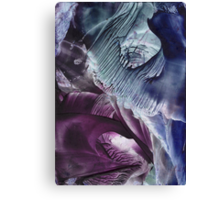 Reflective journey to other dimensions Canvas Print