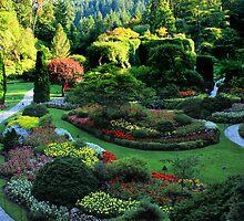 Butchart Gardens 1 by Charles Kosina