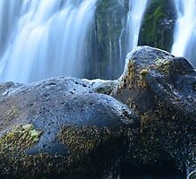 Middle McCloud Falls VII by Tracy Jones