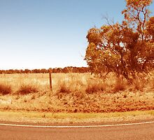 Para Foothills - South Australia by Rebecca Hansen