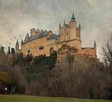 Alcázar ~ Segovia by rentedochan