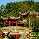 China Garden by Manon Boily