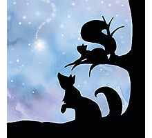 Woodland Shadows - Fox and Squirrel:Winter Photographic Print