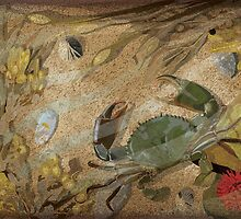 Crab and rockpool by Carl Conway