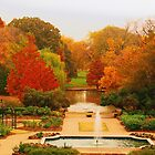 Fort Worth Botanical Gardens by Robert Brown