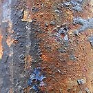 Rusty Case by Randall Robinson