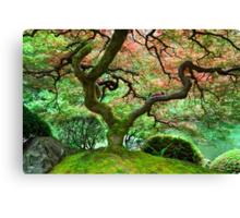 Natural Harmony Canvas Print
