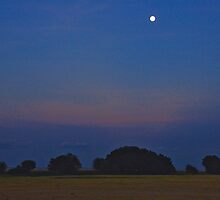 Serengeti Moon by phil decocco
