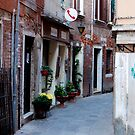 Venetian Alleyway by Rae Tucker