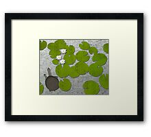 Water lilies with Florida Soft-shell Turtle Framed Print