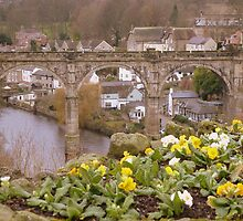 Knaresborough by Sue Gurney