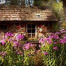 Garden - Belvidere, NJ - My little cottage by Mike  Savad