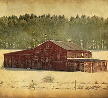 The rundown red barn by vigor