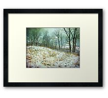 Trees Sky and Snow Fence   Framed Print