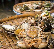crab baskets by Anne Scantlebury
