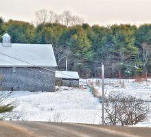 A Maine Drive by Richard Bean