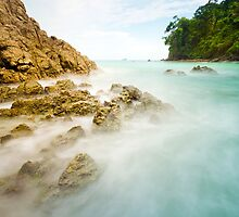 Manuel Antonio by Brandt Campbell