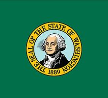 Washington State Flag by azaky