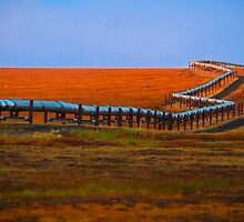 Alaska oil pipeline by raymona pooler