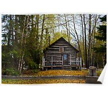 Alaskan Wlderness home Poster