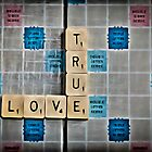 True Love by Paul Stevens