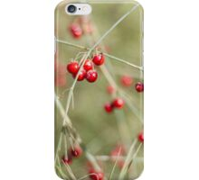 Asparaus Bokeh iPhone Case/Skin