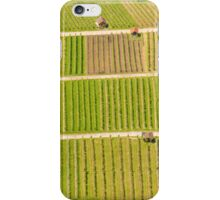 German Vineyards iPhone Case/Skin