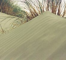 sand-dune by hulkingrach