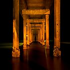 Under the Jetty by Andrew Dickman