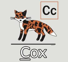 Cow + Fox = Cox (alphabet book style) by Thereal Appeal