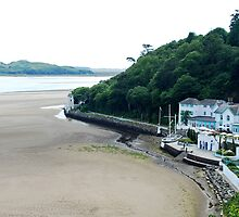 On the beach of Portmeirion (Wales) by Arie Koene