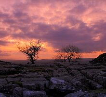 a sunset in the dales by sean-gibson
