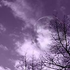 Purple Night - JUSTART ©  by JUSTART