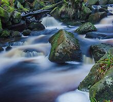 Mystical Burbage Brook by Angie Morton