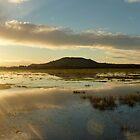 Flooding in Somerset by Meladana