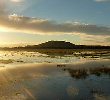 Flooding in Somerset by Meladana