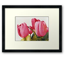 Tulips For You Framed Print