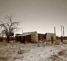 Route 66 Ruins by Frank Romeo