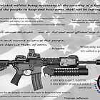 CONSTITUTIONAL RIGHT to BEAR ARMS by Daniel-Hagerman