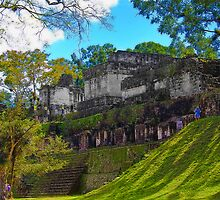 Guatemala. Tikal. The Ruins of the Royal Palace. by vadim19