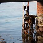 Under the Pier by Jenni Greene