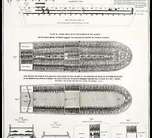 BROOKES MIDDLE PASSAGE SLAVE SHIP  1788 by Daniel-Hagerman