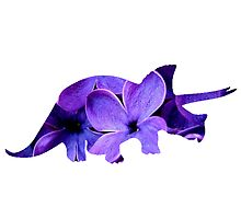 Flower Triceratops by Jordan Turner