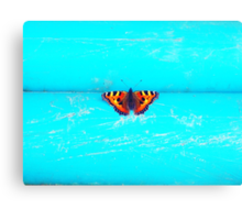 Butterfly- Unique Photography  Canvas Print