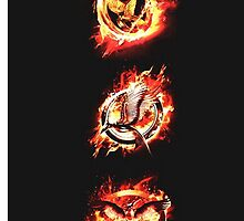 The Hunger Games Mockingjay by Itzel Aristide