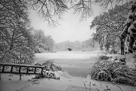 Winter Wonderland by Chris Lord