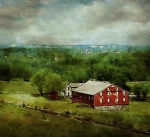 Red Barn by Terry  Pellmar