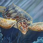 Sea Turtle by Phyllis Beiser