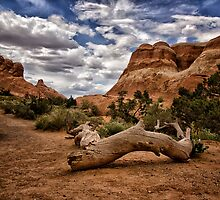 Hiking At Arches by Kathy Weaver